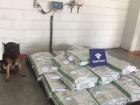 Receita Federal apreende 450 quilos de cocaína no Porto de Santos