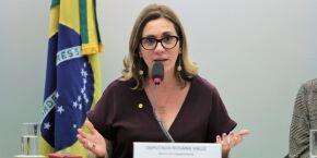 Rosana Valle - Atrair investimentos para gerar empregos