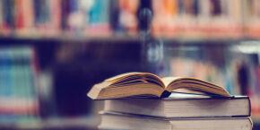 Feira de Livros é novidade em Praia Grande