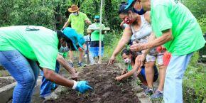 Voluntários podem plantar e colher no Jardim Botânico de Santos