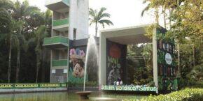 Mais de 80% dos frequentadores aprovam nova estrutura do Botânico de Santos