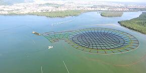 CPI das Cavas Subaquáticas aprova plano de trabalho; primeiros depoimentos são definidos
