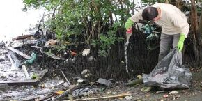 Secretarias se unem para mutirão de limpeza na Cidade Náutica