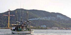 Pescadores da Baixada Santista fazem protesto nesta segunda-feira