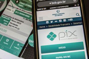 Os supeitos transferiram uma quantia de R$13.500,00 via Pix