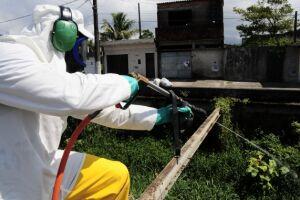 Os números demonstram que Praia Grande está focada também na luta contra a dengue