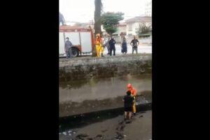 Acidente aconteceu no Canal 5, em Santos