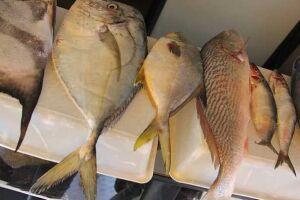 O Caminhão do Peixe percorre os bairros da sede do Município e do distrito de Vicente de Carvalho oferecendo pescados a preços mais acessíveis.