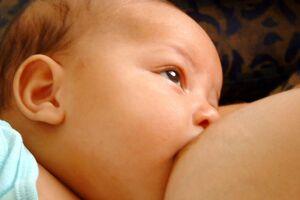 Em caso de dúvidas sobre amamentação, a mãe pode acionar (ligando ou encaminhando mensagem) os três números