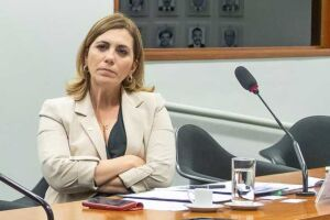 A deputada federal Rosana Valle (PSB).