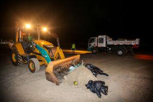 Praia Grande registra queda de 600 toneladas de lixo na orla durante período de restrições de uso da praia