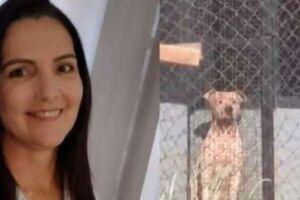 A costureira Marli Donegá Tizura chegava à chácara em que o namorado trabalha como caseiro quando foi atacada pelos animais.
