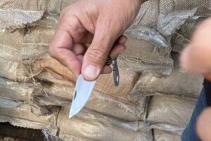 Trata-se da maior apreensão de 2021, que já soma 9.811 kg de cocaína apreendidos.