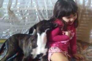 Por força do destino, eis que uma garotinha chamada Jade, de apenas quatro anos, cruzou o caminho da cachorrinha