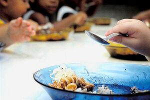 Tribunal fiscaliza qualidade da merenda em escolas de 180 cidades paulistas
