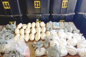 Mais de 28 quilos de drogas (cocaína, crack e maconha) foram apreendidos com mandado de busca coletivo em uma área na Avenida Plínio de Queiroz, em Cubatão