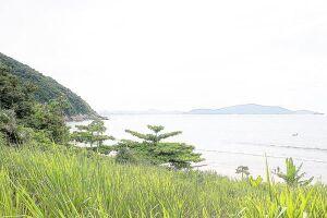 O acesso à praia de Itaquitanduva pode ser feito por duas trilhas: a dos Surfistas e a do Curtume; percurso dura aproximadamente 40 minutos e é de nível moderado