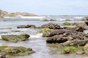 Pocinho de Anchieta, localizado na Praia do Cibratel