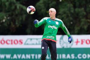 Fernando Prass completará 200 jogos pelo Palmeiras no Campeonato Paulista