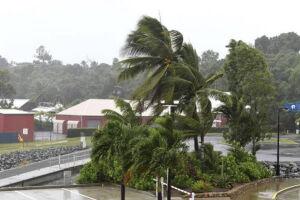 Palmeiras se dobram pela força do vento que antecede a chegada do ciclone Debbie em Queensland, Austrália