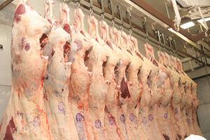 Operação 'Carne Fraca' foi deflagrada pela Polícia Federal em março deste ano
