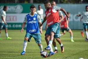 Próximo da estreia na Copa Libertadores, o técnico tem o apoio e confiança do grupo alviverde