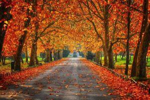Outono começa às 7h29 da próxima segunda-feira