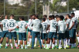 O Palmeiras terá pela frente um adversário da Série B do Campeonato Brasileiro pelas oitavas de final da Copa do Brasil