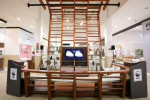 Exposição em shopping de Brasília visa promover o uso sustentável e responsável da madeira na construção civil