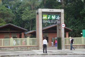 Aula de alongamento é destaque no Orquidário de Santos