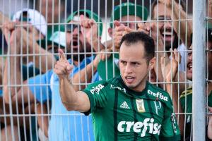 Com gols anotados pelo meia Alejandro Guerra, o Palmeiras finalmente ganhou da Ponte Preta no Estádio Moisés Lucarelli