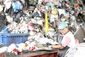 Legislação torna obrigatória a separação entre resíduos recicláveis (papel-papelão, metais, plásticos, vidros) e os orgânicos (restos de comida, por exemplo)