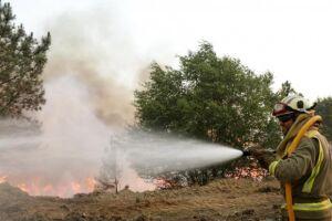 Após dias de combate ao fogo, incêndio em Góis, em Portugal, é declarado extinto