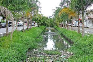 Biólogo diz que é preciso recuperar a mata ciliar (cobertura vegetal nativa) dos rios da cidade