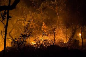 Incêndio que assola a Chapada dos Veadeiros desde o dia 17 de outubro foi criminoso