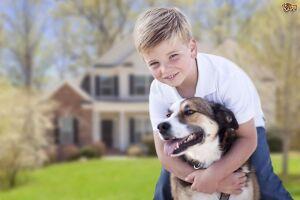 As mordidas de cães são lesões comuns e potencialmente graves em crianças