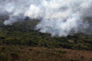 Incêndio atingiu 66.014 mil hectares, o equivalente a 28% do Parque Nacional da Chapada dos Veadeiros