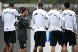 O Santos encerra o Campeonato Brasileiro neste domingo, na Vila Belmiro