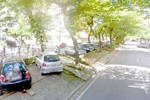 Avenida Leomil pode mudar de nome