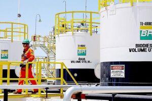 Abin e Petrobras estão com inscrições abertas