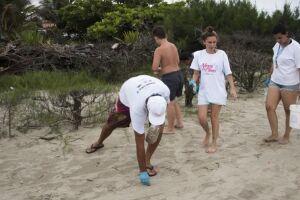Entidades e população se reúnem para mutirão de limpeza das praias de Itanhaém