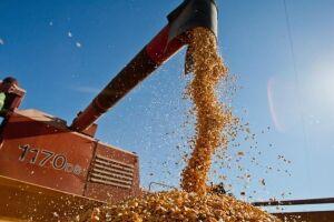 A intensidade das chuvas de dezembro determinou uma projeção de aumento de 2,2% na safra agrícola deste ano