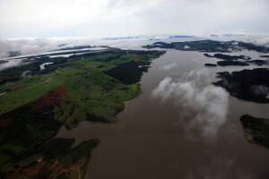 Amazônia está se aproximando perigosamente da beira do abismo climático