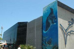 O aquário de Santos receberia bom público nesse feriado prolongado de carnaval, mas foi interditado.
