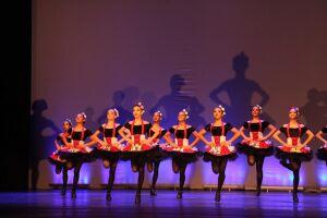 A Escola de Bailado Municipal de Santos é um dos mais importantes institutos de dança do País