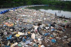 Os cientistas estimam que, dentro de 30 anos, os oceanos conterão mais plásticos do que peixes