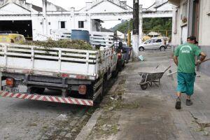 A Operação Cuidando de Santos consiste no corte do mato e da grama