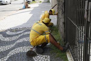 O Cuidando de Santos chegou a 51,7 quilômetros de vias públicas já capinadas
