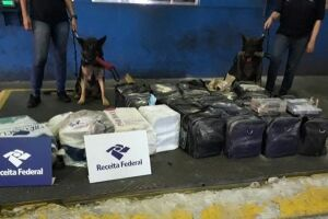 Receita Federal apreende 355 quilos de cocaína no Porto de Santos