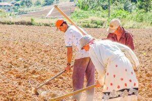 Este é mais um episódio no embate entre boias-frias e fazendeiros do Pará.